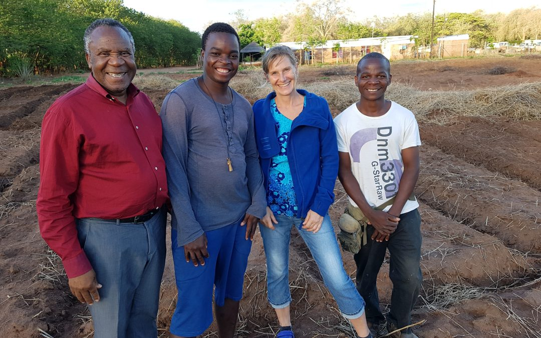 A FARM FLOURISHES ANEW! – Stories from the missionfield | January 2019